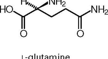 Composizione chimica della glutammina